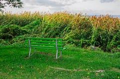 Lake Bench Royalty Free Stock Images
