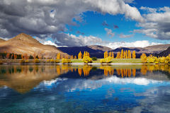 Lake Benmore, New Zealand royalty free stock photography