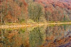 Lake Biograd (Biogradsko jezero), Biogradska Gora national park. In autumn, Montenegro Stock Photo