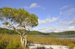 Lake Birrabeen stock images
