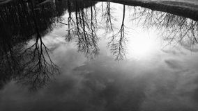 Lake in black and white. A close up of a lake in black and white Royalty Free Stock Images