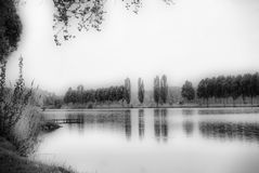 Lake in black & white. It seems to be a mysterious lake, with frog and reflection of trees in water... Theres no any people around it Stock Images