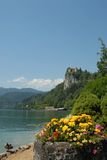 Lake of Bled. View of Bled Castle with flowers and a preening duck Royalty Free Stock Photos