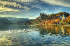 Lake Bled, Castle Bled, church  St. Marina and church  Assumption of the Virgin Mary   Slovenia -an autumn picture. Lake Bled, Castle Bled, church  St. Marina Stock Photo