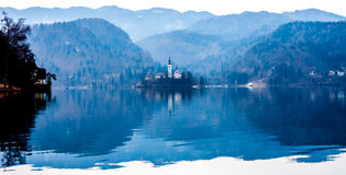 Lake Bled with island. And  churche in the Spring Stock Photos