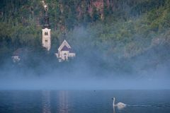 Lake Bled in the Mist Stock Photography