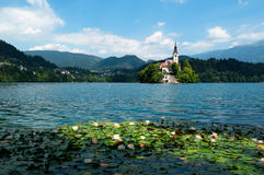 Lake Bled in Slovenia Royalty Free Stock Image