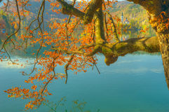 Lake Bled, Slovenia - autumn view Royalty Free Stock Photos