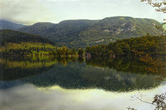 Lake Bled in Slovenia Royalty Free Stock Photography
