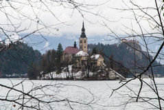 Lake Bled, Slovenia. View of Lake Bled with island in Slovenia in winter Stock Images