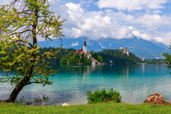 Lake Bled in summer Stock Images