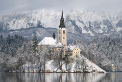 Lake Bled in winter Stock Images