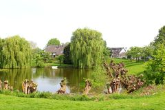 Scenic lake, boat and willows landscape in the Betuwe, Holland Royalty Free Stock Images