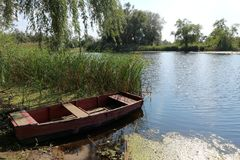 Lake, boat on the shore, reeds, trees Stock Photo