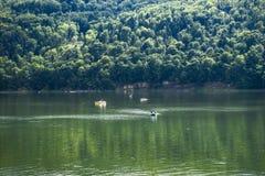 Lake and boats. Stock Photography