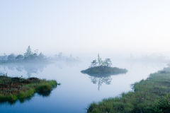 Lake in a bog Stock Photo