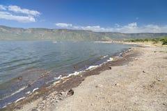 Lake Bogoria, Kenya. Lake Bogoria shore in Kenya, the hot water is green from algae Stock Images