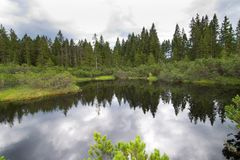 A lake in the Bohemian Forest. Czech Republic royalty free stock images