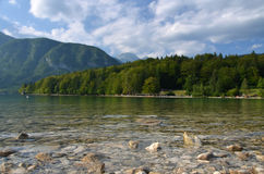 Lake Bohinj Stock Photography