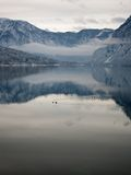 Lake bohinj Stock Photos
