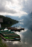 Lake Bohinj Stock Images