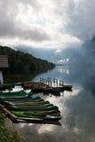 Lake Bohinj Stock Images