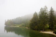 Lake Bohinj Slovenia Stock Photos