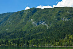 Lake Bohinj in Slovenian Alps Stock Photo