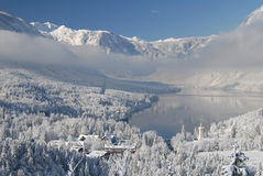 Lake Bohinj in winter Stock Photo