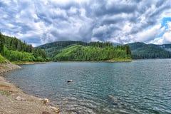 Lake Bolboci. Peninsula from lake Bolboci,Bucegi Mountains Stock Images