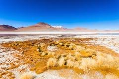 Lake, Bolivia Altiplano Royalty Free Stock Photo