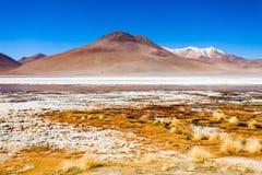 Lake, Bolivia Altiplano Royalty Free Stock Image