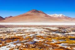 Lake, Bolivia Altiplano Royalty Free Stock Photography