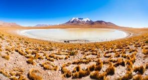 Lake, Bolivia Altiplano Stock Image