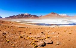 Lake, Bolivia Altiplano Royalty Free Stock Images