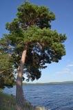 Lake Borovoe, State National Natural Park Royalty Free Stock Photos