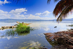 Lake Bosumtwe with palms Stock Photography