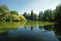 Lake in botanical garden Royalty Free Stock Images
