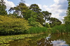 Lake in botanical gardens Stock Photography