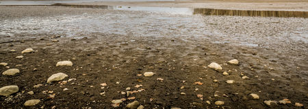 Lake bottom. A prospective of Mifflin lake after being drained this year Stock Photography