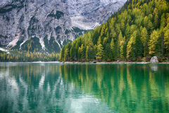 Lake Braies known as Lago di Braies. Royalty Free Stock Image