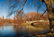 Lake and Bridge Stock Image