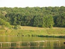Lake and bridge. Lake and  wooden bridge for fishermen, dense green forest Stock Photos