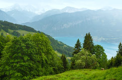 Lake Brienz summer top view (Switzerland). Stock Photos