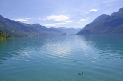 Lake Brienz in Swizerland Royalty Free Stock Photo