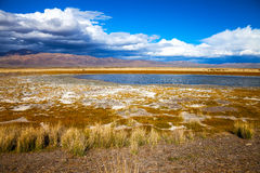 Lake in bright multi-colored steppe Royalty Free Stock Image