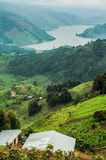 Lake Bunyonyi Viewed from Up High. Royalty Free Stock Photography