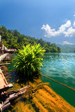 Lake, bush, jungle, house Royalty Free Stock Photography