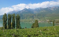 Lake Caldaro,south Tyrolean Wine Route,Italy Royalty Free Stock Photo
