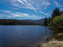 Lake in California. Lake surrounded by woods in California Stock Photo